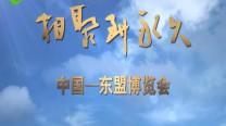 第14届东博会推介片《相聚到永久》